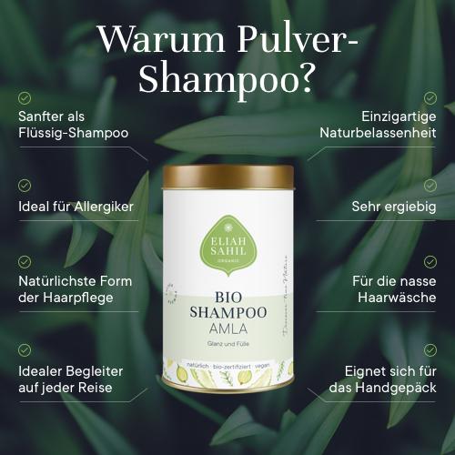 Bio Shampoo Powder - Amla, 100 g